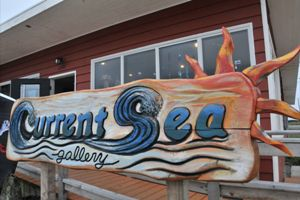 Current Sea gallery Westport Washington